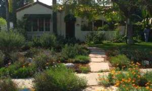 bad-landscaping-chico-ca